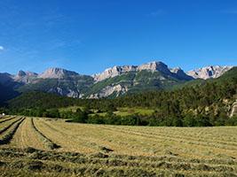 La Vallée de Quint est agricole